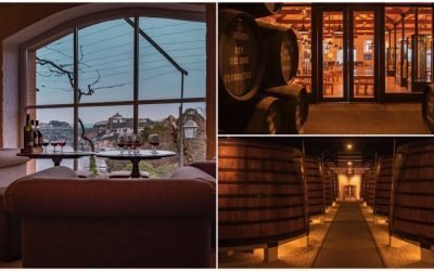 Discover here the best wine regions in Portugal!