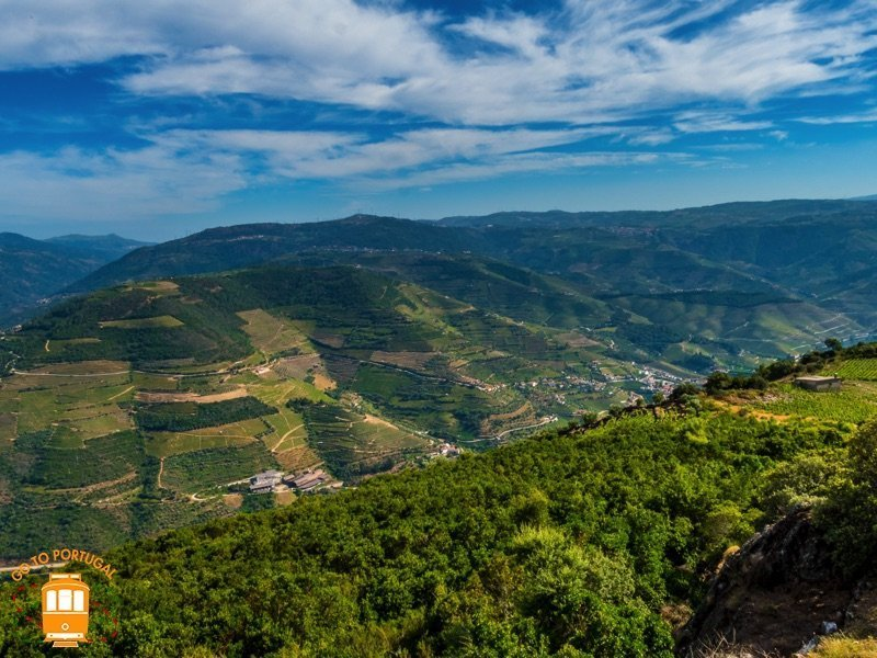Itinerary of one day to visit Lamego and the amazing Douro Valley