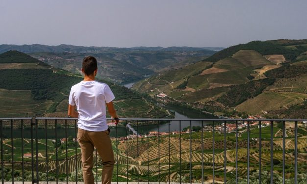 Road trip in Douro Valley and Porto in 7 days